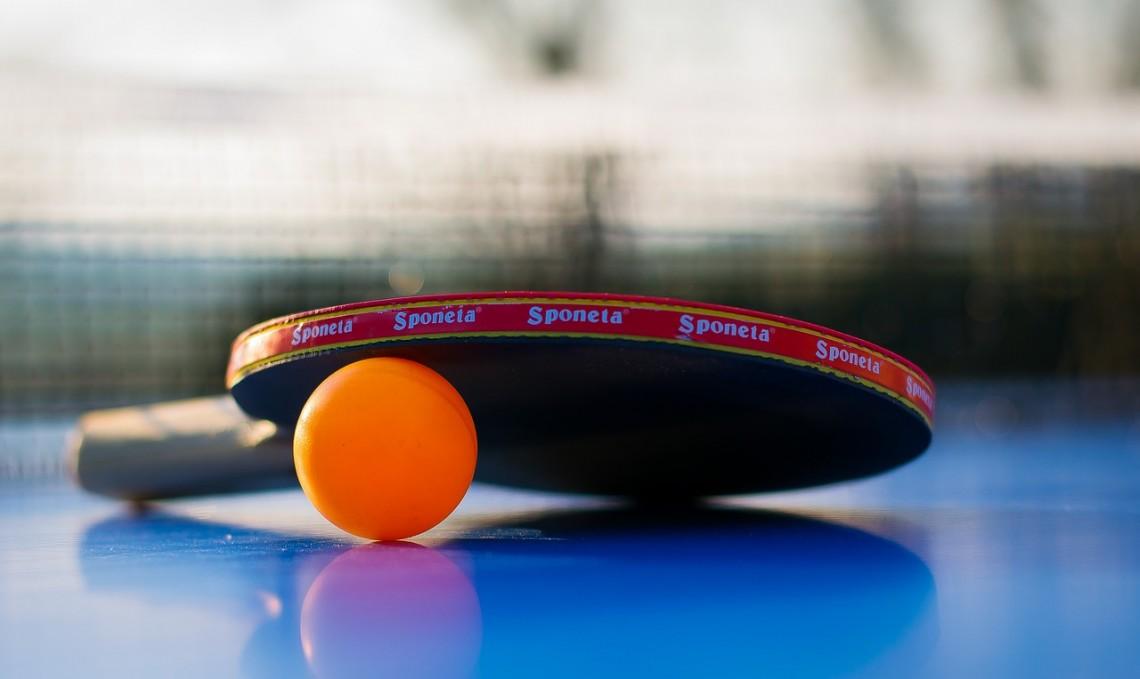 Wakacyjny Turniej Tenisa Stołowego w Stolarzowicach