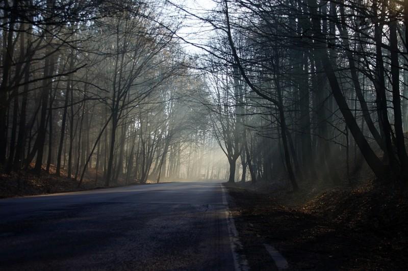 Poranna mgła, ulica Podleśna